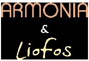 Armonia & Liofos – Καλαμίτσι Λευκάδας,Διακοπές στην Λευκάδα, Ξενοδοχεία Λευκάδα, Διαμονή στην Λευκάδα, Διαμερίσματα διακοπών Λευκάδα,